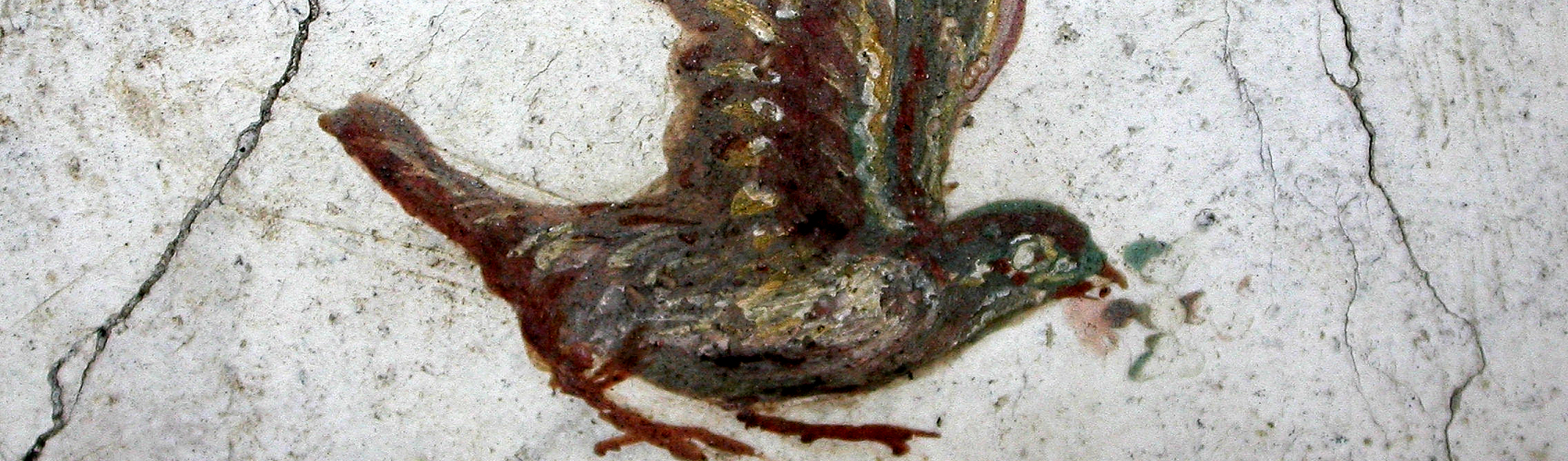 Painting of a bird on cracked wall